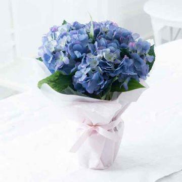 Exotic Hydrangea Bouquet