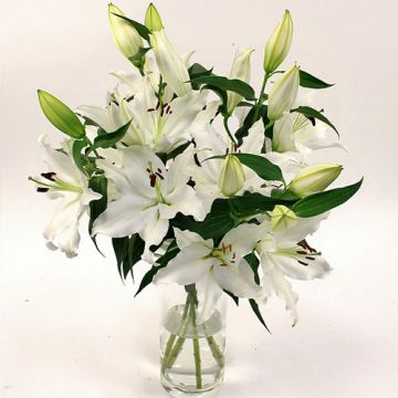 Celebration with Lilies