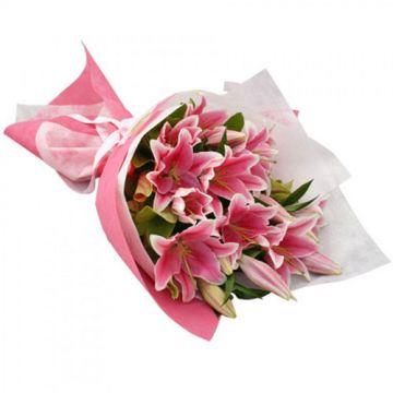 Surprising Lilies