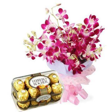 Chocolaty Orchids