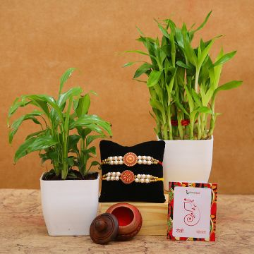 Bamboo & Plant Rakhi Gift