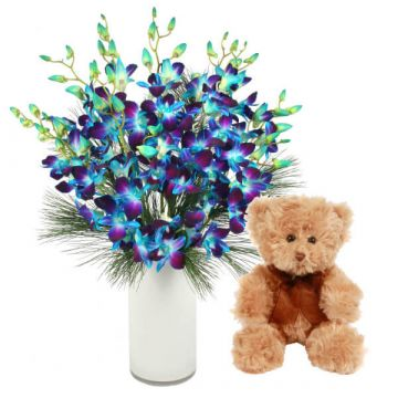 Blue Orchids and Teddy