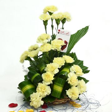 Yellow Carnations Special