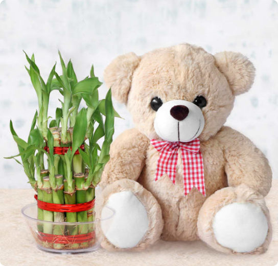 Plant with Gifts